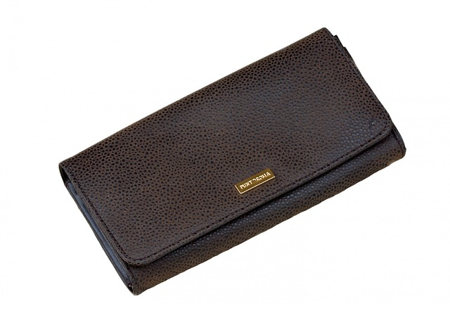 kabelka na peníze