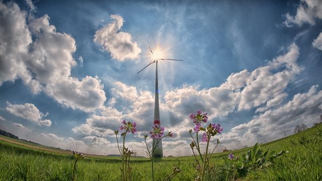 Větrná turbína, před kterou rostou fialové květiny stojící na louce za slunného počasí